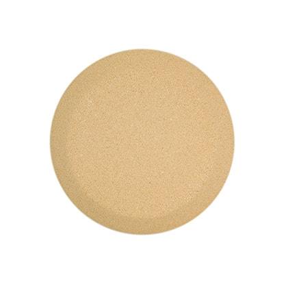 Sandstone Stone Colour
